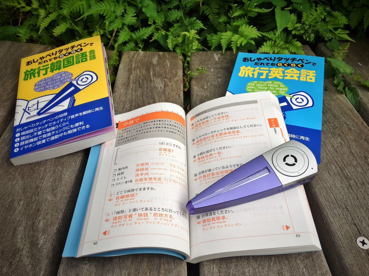 Chinese-side-the-book